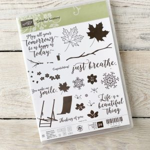 Stampin' Up! Colourful Season Stamp Set for sale