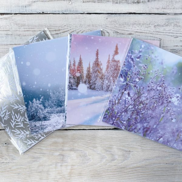 Stampin' Up! retired papers Feels like Frost