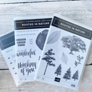 Stampin' Up! Retired Stamp set and Die Bundle Rooted in Nature