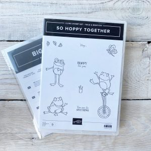 Stampin' Up! retired stamp set and die bundle So Hoppy Together